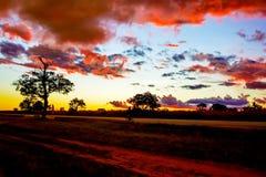 Sunrise landscape in Tanzania. Picturesque sunrise landscape over wilderness in Tanzania royalty free stock photo