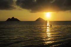 Sunrise at lanikai. With paddle boarder and his dog Stock Image