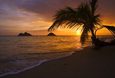 Sunrise at lanikai beach in Hawaii Royalty Free Stock Photos