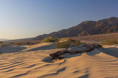 Sunrise light illuminating  sand dunes and mountains in a desert Royalty Free Stock Photography