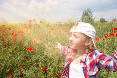 Sunrise . Light from sky . Religion background . The blossoming poppies . Inner world of the child . Meditation as way of life . Relaxation in the fresh air royalty free stock photos