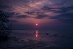 Sunrise during low tide Royalty Free Stock Photography