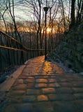 Sunrise in Lviv High Castle Stock Photography