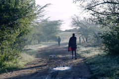 At sunrise Maasai Mara tribe men follow a road Royalty Free Stock Photo