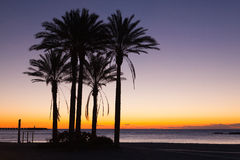 Sunrise on the Malaga beach Stock Photos