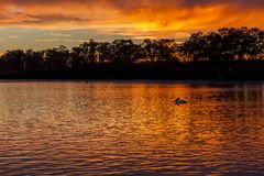 Sunrise at Mannum riverbank, River Murray South Australia with p stock photos