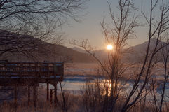 Sunrise in the marsh stock images