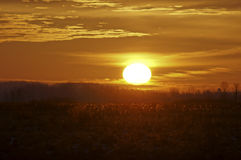 Sunrise at the Marsh. Sunrise on a late winter day Royalty Free Stock Images