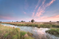 Sunrise on marshes and swamp Stock Photos