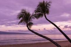 Sunrise on a Maui Beach Stock Photo