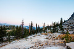 Sunrise Meadow Dusk. Dusk above Sunrise meadow in Yosemite Royalty Free Stock Photography