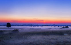Sunrise in the meadow. Summer sunrise in the meadow Stock Images