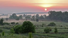 Sunrise on meadow in valley stock footage
