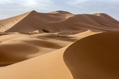 Sunrise at Merzouga, which lies on the edge of Erg Chebbi (the Sand Sea) in Morocco. Stock Image