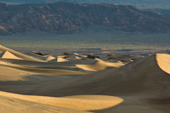 Sunrise on Mesquite Flat Sand Dunes Royalty Free Stock Photo