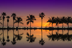Sunrise in Miami Royalty Free Stock Photo