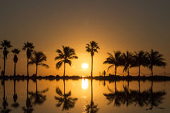 Sunrise in Miami Stock Images