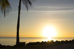 Sunrise in Miami Royalty Free Stock Image