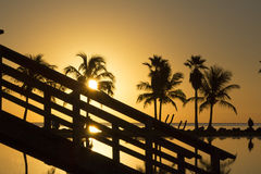 Sunrise in Miami Royalty Free Stock Photography