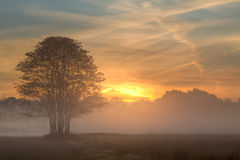 Sunrise Through the Mist. Sunrise on a misty morning Royalty Free Stock Image