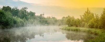 Sunrise with mist over a lake at the wetlands royalty free stock photo