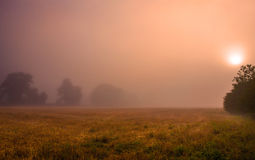 Sunrise in the mist Royalty Free Stock Photography