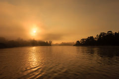 Sunrise through the mist in a tropical rainforest. Misty sunrise over a jungle river stock images