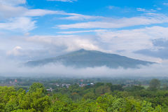 Sunrise and The Mist with Yellow Flowers Foreground in Winter ,This`s Mountain looks like Mount Fuji in Japan., Landscape at Phu H. Sunrise and The Mist with stock photo