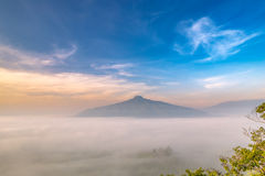 Sunrise and The Mist with Yellow Flowers Foreground in Winter ,This`s Mountain looks like Mount Fuji in Japan., Landscape at Phu H Royalty Free Stock Photography