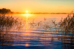 Sunrise misty lake stock photography