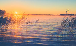 Sunrise misty lake royalty free stock photos