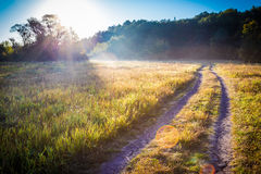 Sunrise on misty meadow, autumn concept Royalty Free Stock Photo