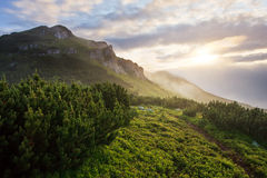 Sunrise in misty mountains Royalty Free Stock Image