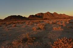 Sunrise Mojave desert Nevada town of Pahrump Royalty Free Stock Images