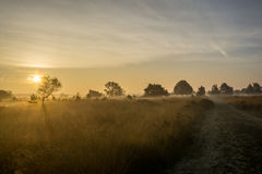 Sunrise moorland. Seen from a Road stock photography