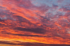 Sunrise in the morning Stock Images