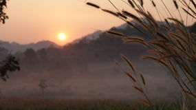 The sunrise in the morning. The sunrise is on behind mountion at Uthaitani in thailand.So clod and beautiful. you can see the clound on the floor on this photo royalty free stock image