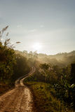 Sunrise in the morning. Sunrise on the country road in the morning Royalty Free Stock Images