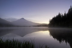 Sunrise Morning Fog at Trillium Lake Stock Photography