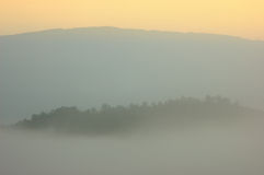 Sunrise in the morning mist cover pine tree forest form Chiangma Stock Photos
