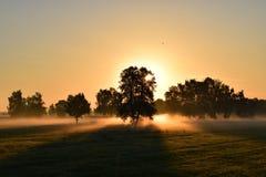 Sunrise, Morning Mist, Morgenrot Stock Image