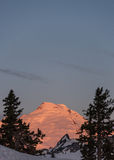 Sunrise at Mount Baker Royalty Free Stock Photography