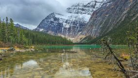 Sunrise at Mount Edith Cavell from the Cavell Lake stock video