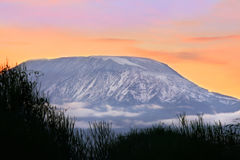 Sunrise on mount Kilimanjaro. Kenya. Amboseli national park Stock Image