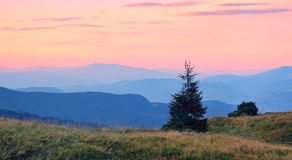Sunrise Mountain. Dawn in the mountains. The picture was taken in the Ukrainian Carpathians at dawn Royalty Free Stock Photos
