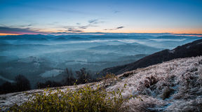 Sunrise on mountain with fog and iced grass. Landscape of carpathian mountains Stock Photo