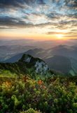 Sunrise on mountain at summer Royalty Free Stock Photography