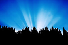 Sunrise in the mountains with rays of light passing through tree Royalty Free Stock Photos