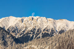 Sunrise in the mountains, with snow covered peaks, frost covered fir trees and setting moon Royalty Free Stock Photos
