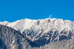 Sunrise in the mountains, with snow covered peaks, frost covered fir trees and setting moon Royalty Free Stock Photo